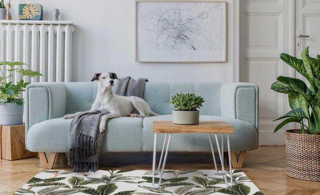 tapis en vinyle animaux domestique